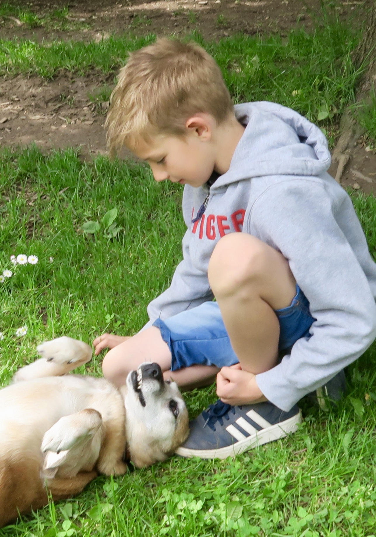 Tierheim-Besuch mit den Kindern vom Hunde-Einmaleins